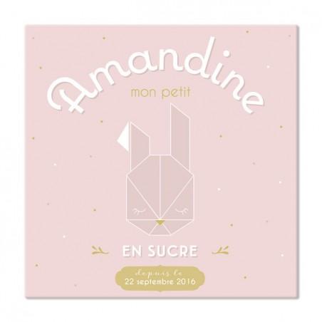 Tableau naissance personnalisé - Modèle Mon petit lapin rose poudré