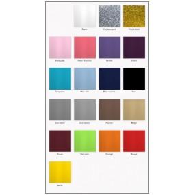 coloris-vinyle